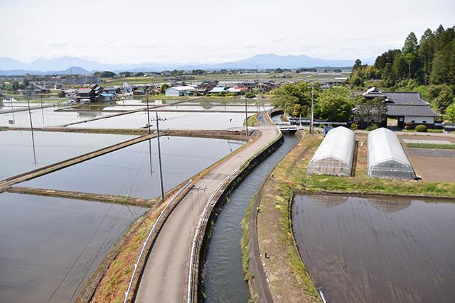 市の掘用水を巡る