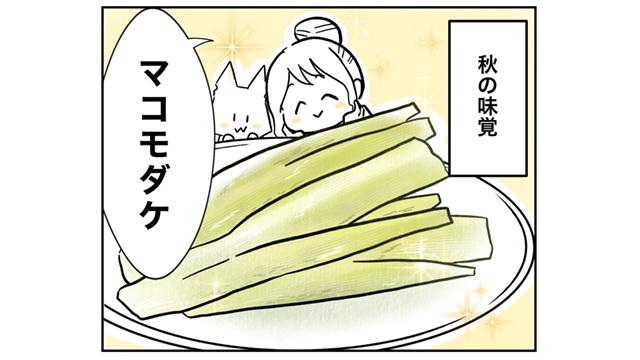 マコモダケ