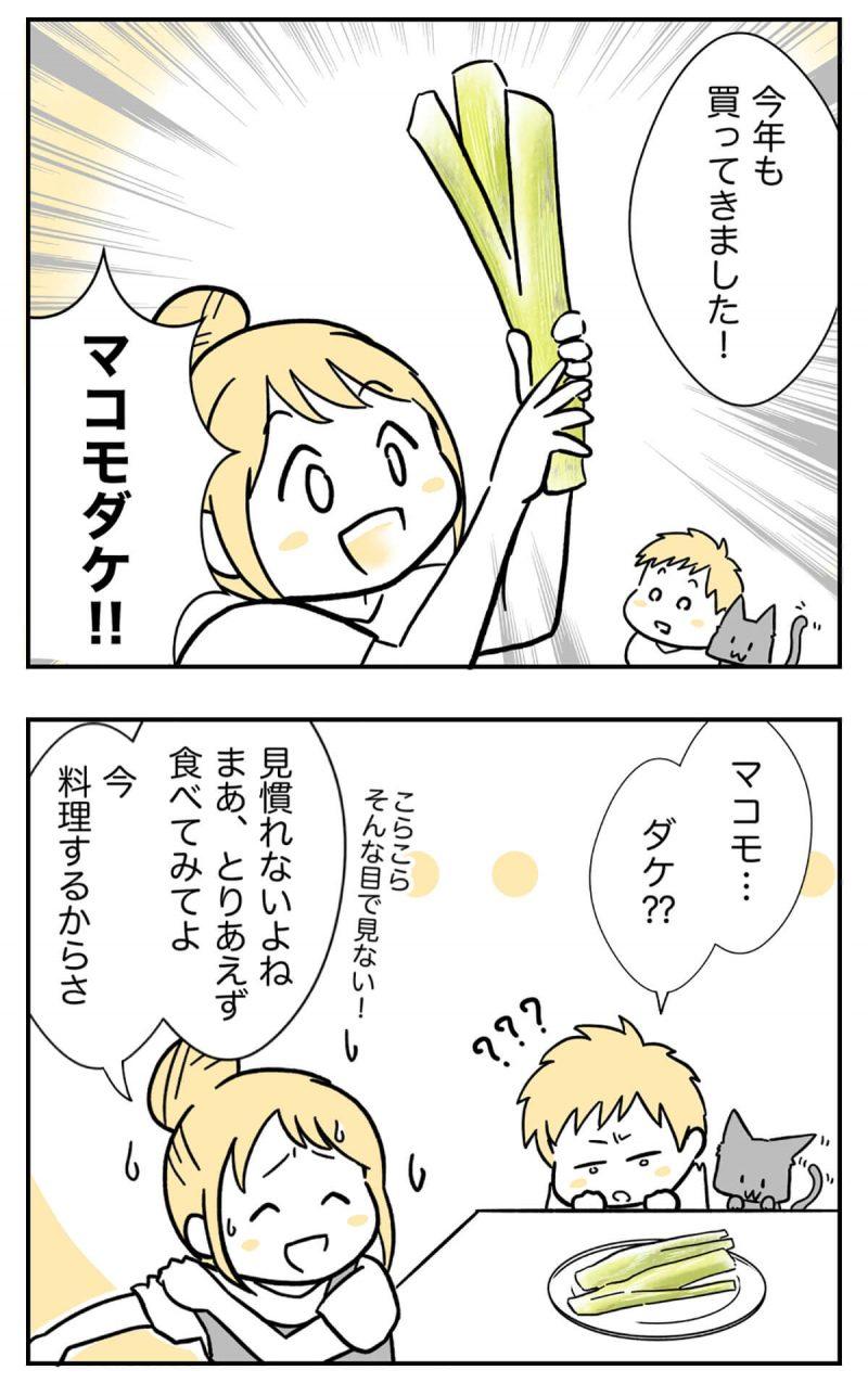 マコモダケ1