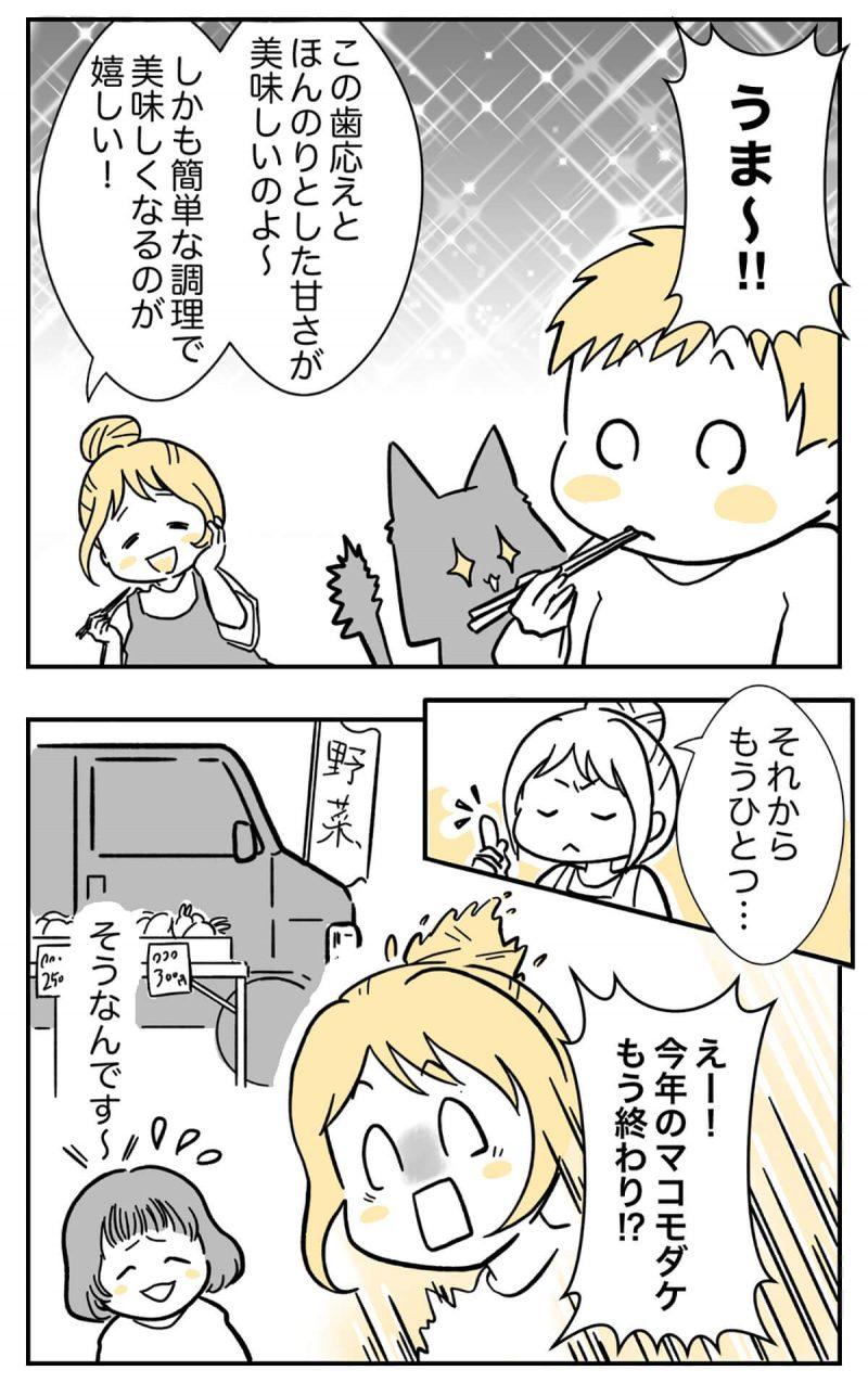 マコモダケ3